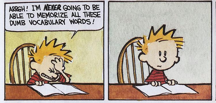 Calvin Vocabulary